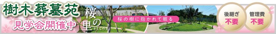 後継ぎ不要・管理費不要の樹木葬墓苑の桜の樹に抱かれて眠る「桜の里」見学会開催中