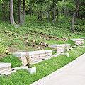 樹林墓地・桜葬