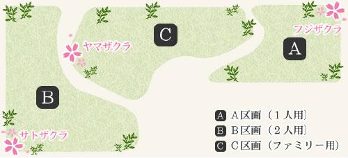 桜葬木立区画