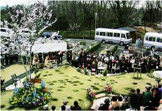 桜葬en21
