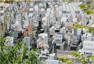 和型墓地1