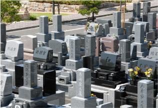 和型墓地2