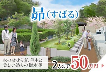 昴 2名まで50万円
