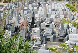 一般墓地の写真