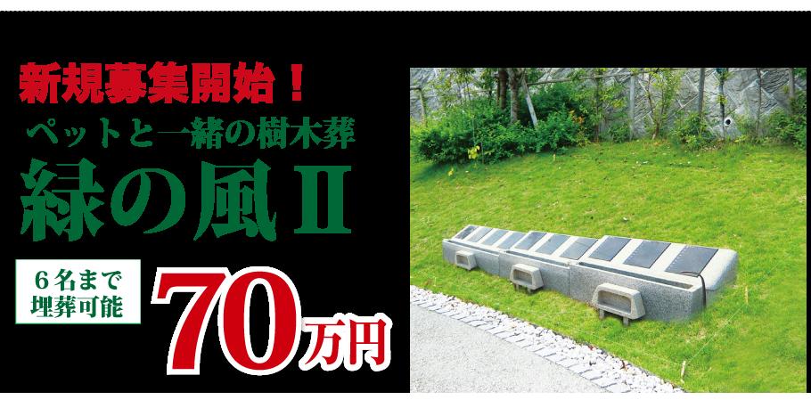 新規募集開始 ペットと一緒の樹木葬 緑の風2 6名まで埋葬可能 1区画70万円